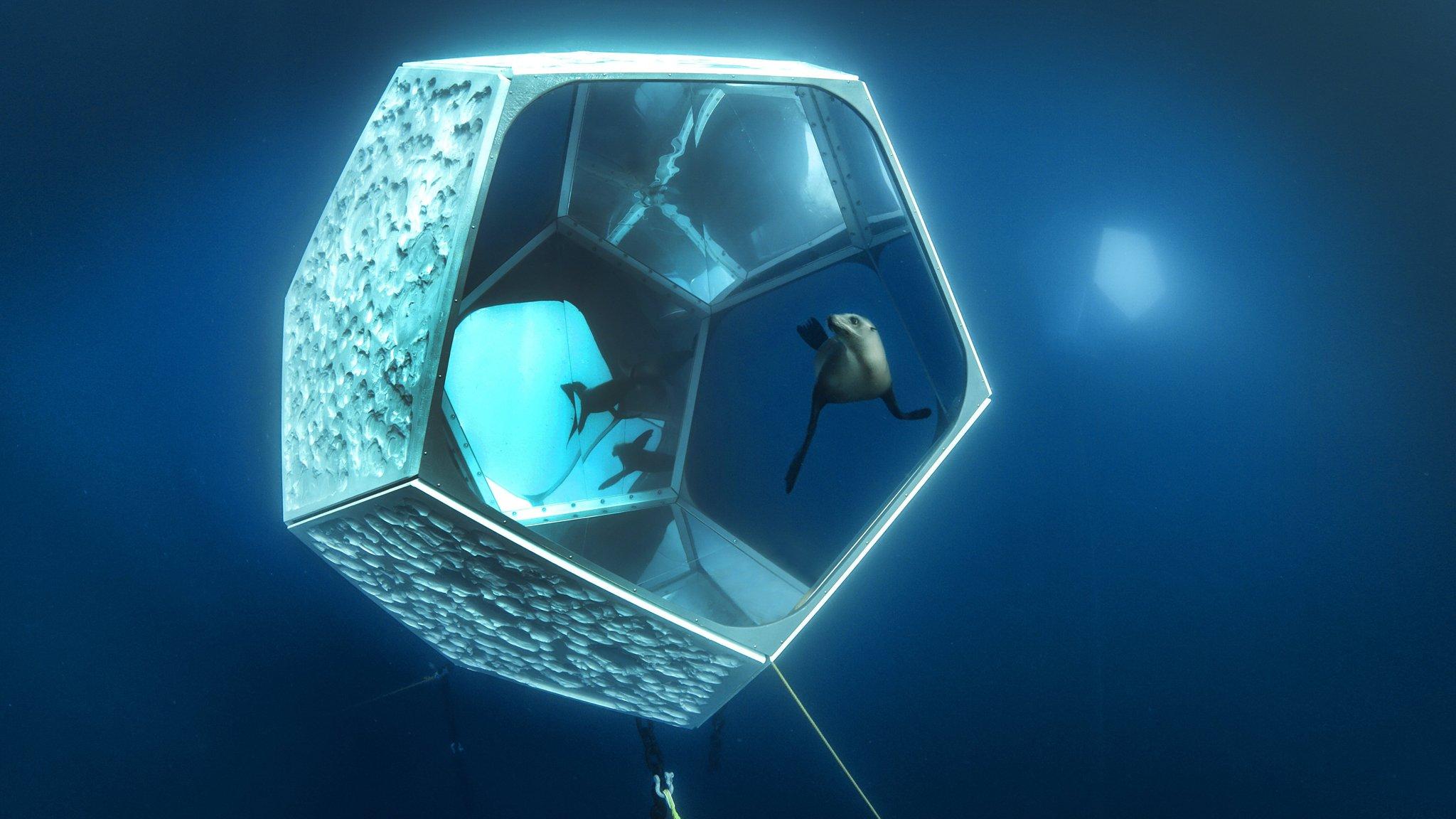 Underwater Pavilions